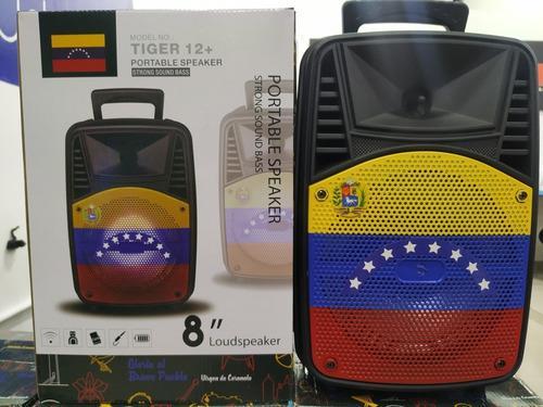 Corneta Amplificada Bluetooth Tiger 12+ Radio Pendrive Micro