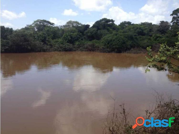 Finca de 107 Hectáreas en Calabozo con Rio arenoso