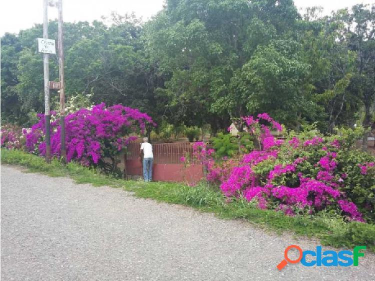Parcela agrícola en Villa de Cura