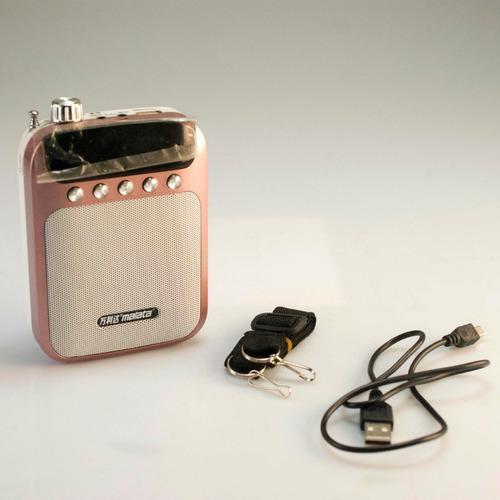Radio Portátil Recargable Usb Micro Sd Nuevo Excelente