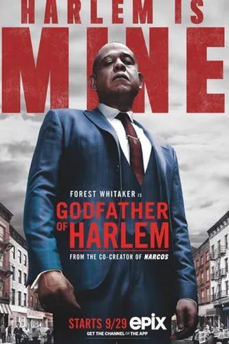 The Godfather Of Harlem Serie Por Temporada Digital Pendriv