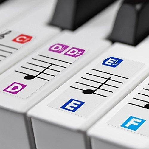 Calcomania Color Para Tecla Piano Extraible Doble Capa