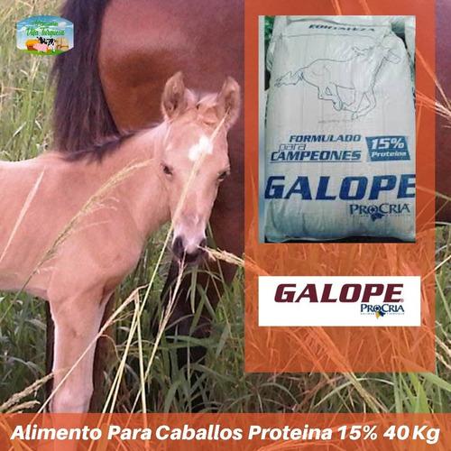 Alimento Para Animales / Caballos Galope  Kg Procria