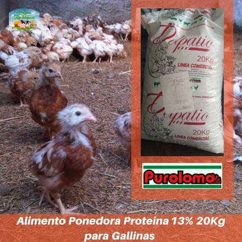 Alimento Para Animales / Gallina Ponedora  Kg Purolomo